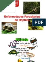 Enfermedades Paras It Arias en Reptiles