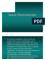 Junção Neuro