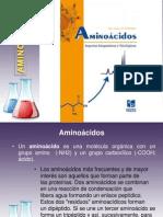 orginal aminoacidos