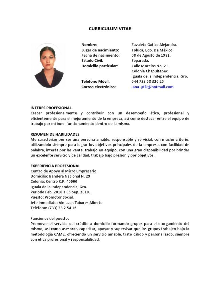 Contemporáneo Grandes Objetivos De Curriculum Vitae Galería ...
