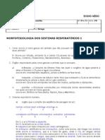 respiratorio_1
