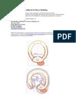 Tabla Científica de la Nueva Medicina Germánica del Dr. Ryke Geerd Hamer