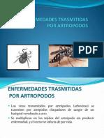 2. Virus Por Artropodos
