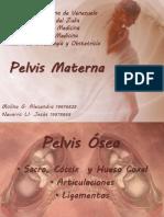 Pelvis Materna