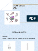 biomoleculas-carbohidratos-090916204245-phpapp01