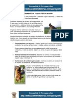 Entrenamiento de Perros Pastor Alemán
