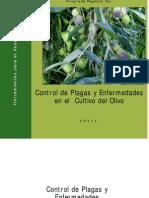 Control de Plagas y Enfermedades en El Olivo