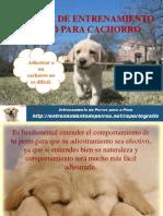 TÉCNICAS DE ENTRENAMIENTO CANINO PARA CACHORRO