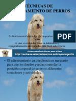 TÉCNICAS DE ENTRENAMIENTO DE PERROS