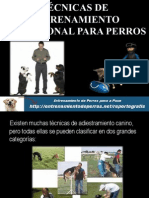 TÉCNICAS DE ENTRENAMIENTO PROFESIONAL PARA PERROS