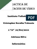 Practica de Observación de Video