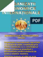 Organizatii I
