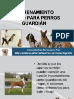 ENTRENAMIENTO CANINO PARA PERROS GUARDIÁN