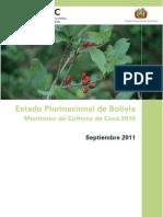 Monitoreo de Cultivos de Coca 2010 - Bolivia