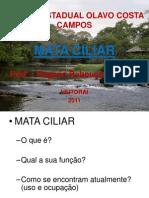 PALESTRA_ MATA CILIAR_ 5° ANO