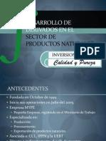 Presentación de Rolando Aliaga (Inversiones 2A)