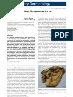 Microchip-Associated Fibrosarcoma in a Cat (2)