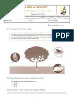 1t1p 8 2011-2012 ( Ecossistemas, Factores abióticos)