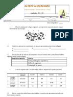 Sistema Cardiovascular - 5t3p 9 2010-2011