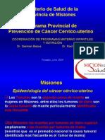 Presentación Programa Prov. Ca de cervix sintesis oct 2010