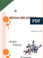 2 Anemia Megaloblastica 1196993301289402 3 Internett