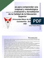 Esq_metodologico Justy