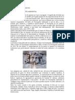 FyF CLXXVIII Índice de Desempeño Ambiental