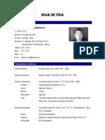 Currículum AMV