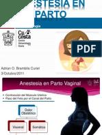 Anestesia Obstetric A Vaginal