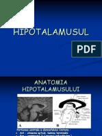 c1.HIPOTALAMUSUL2010
