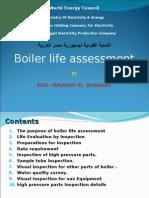 Boiler Life Asessment
