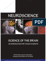 Brain Bee Quiz by Neil Jain | Neuron | Brain