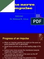 Lect 5 Nerve Impulse Part