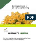 Nemesia Presentation