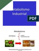 Metabolismo Industrial