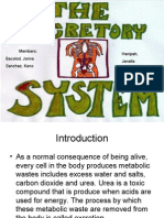 THE EXCRETORY SYSTEM PPT.