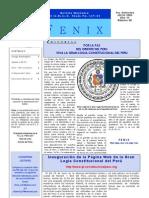 fenix8