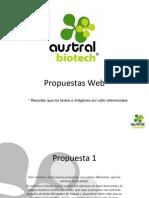 Propuestas Web