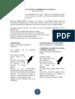 Identificación de colibríes en Guatemala