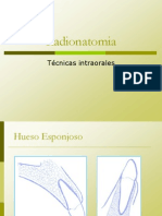 radionatomia intraoral