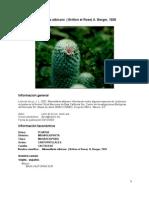 Mammillariaalbicans00