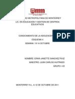 Universidad Metropolitan A de Monterrey Esquema 4
