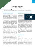 Anemia Neonatal