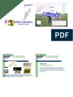 Lipidos_Est 1 Funciones