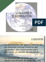 liquidos-y-electrolitos-1233035276982233-2
