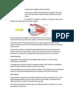 PresentacionVision