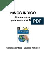 """Coleccion Infinito - Ninos indigo  """" Libro """""""