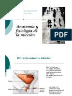 Anatomia y Fisiologia u