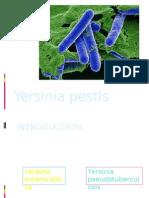 Expo Yersinia Listeria