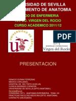 ANATOMIA ENFERMERIA ROCIO. TEMA-01